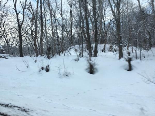 苫小牧を過ぎ、内陸に入っていくと雪が大量です
